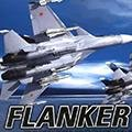 flank2_feat_1